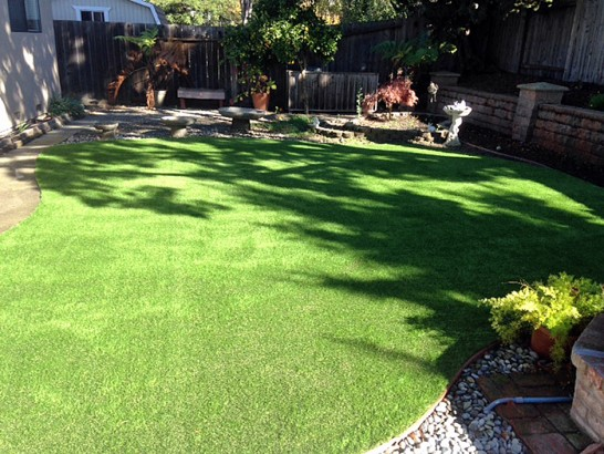 Artificial Grass Photos: Artificial Animal Shelter Peach Lake New York for Dogs  Back