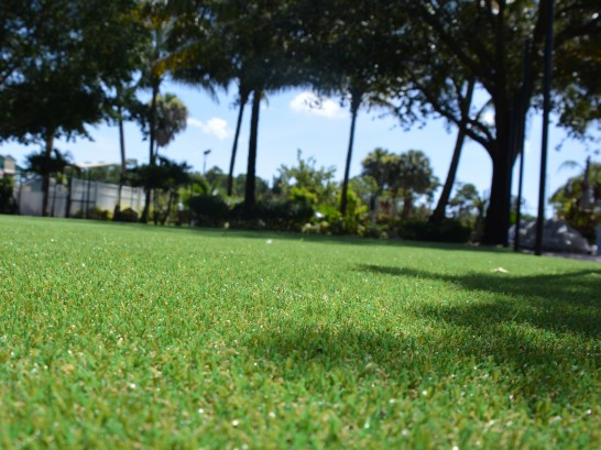 Artificial Grass Photos: Artificial Grass Carpet Ellenville, New York City Landscape, Recreational Areas