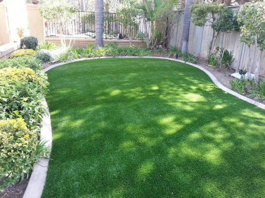 Artificial Grass Photos: Artificial Grass Carpet New Paltz, New York Landscape Ideas
