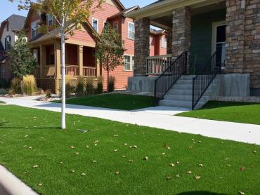Artificial Grass Photos: Artificial Grass Kings Point New York Lawn  Front Yard