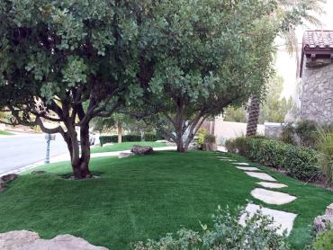 Artificial Grass Photos: Artificial Grass Peekskill New York Lawn  Back Yard