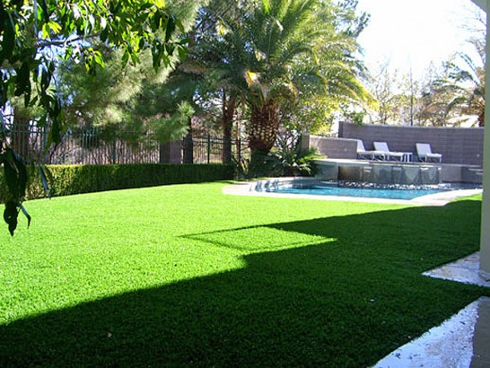 Artificial Grass Photos: Artificial Grass Scotchtown New York  Landscape
