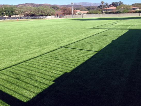 Artificial Grass Photos: Artificial Grass Sports Airmont New York  Back Yard