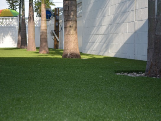 Artificial Grass Photos: Artificial Grass Westhampton Beach, New York Lawn And Garden, Commercial Landscape