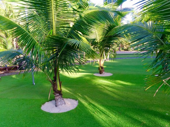Artificial Grass Photos: Artificial Turf Cost Quiogue, New York Landscaping Business, Commercial Landscape