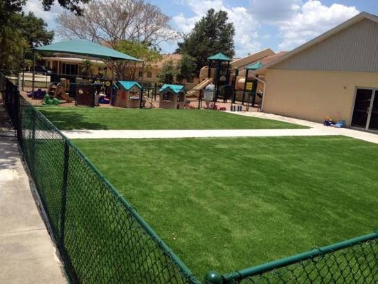 Artificial Grass Photos: Artificial Turf Lindenhurst New York Playgrounds  Back Yard