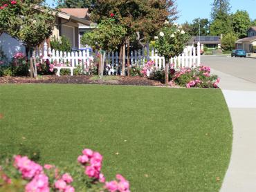 Artificial Grass Photos: Artificial Turf South Valley Stream New York  Landscape