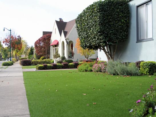 Artificial Grass Photos: Artificial Turf Stony Point New York  Landscape  Back Yard