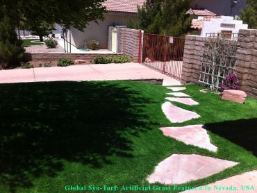 Artificial Grass Photos: Artificial Veterinary Clinic University Gardens New York