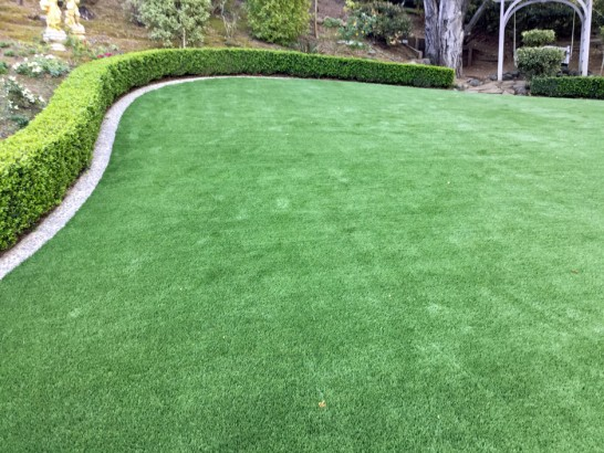 Artificial Grass Photos: Fake Grass Gordon Heights New York Lawn