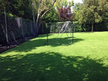 Artificial Grass Photos: Fake Grass  School Stadium Ocean Beach New York  Back Yard