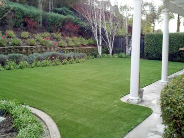 Artificial Grass Photos: Fake Pet Turf East Islip New York Installation  Front Yard