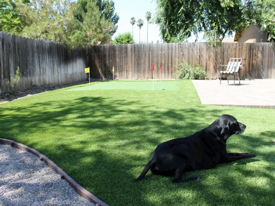 Artificial Grass Photos: Fake Pets Areas Mechanicstown New York Installation