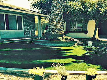 Artificial Grass Photos: Fake Turf Centereach New York Lawn  Back Yard