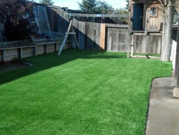 Artificial Grass Photos: Fake Turf Moriches New York Lawn  Back Yard