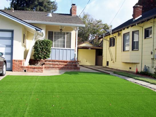 Artificial Grass Photos: Fake Turf North Amityville New York  Landscape  Back Yard