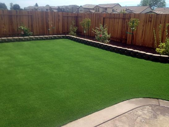 Artificial Grass Photos: Fake Turf Orangeburg New York  Landscape   Pools Back Yard