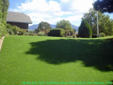 Fake Veterinary Clinic East Atlantic Beach New York Installation artificial grass