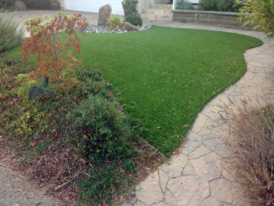 Artificial Grass Photos: Fake Veterinary Clinic Melville New York Installation  Commercial