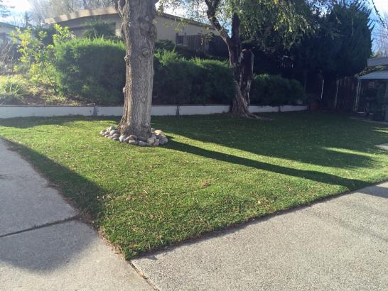 Artificial Grass Photos: Faux Grass Chester New York Lawn