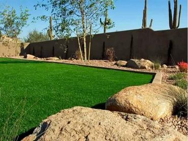 Artificial Grass Photos: Faux Turf Lake Success New York  Landscape  Back Yard