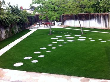 Faux Turf Piermont New York  Landscape  Back Yard artificial grass