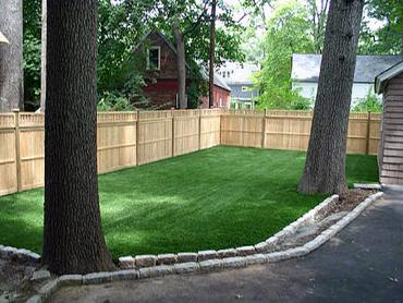 Artificial Grass Photos: Faux Veterinary Clinic Brewster New York for Dogs  Back Yard