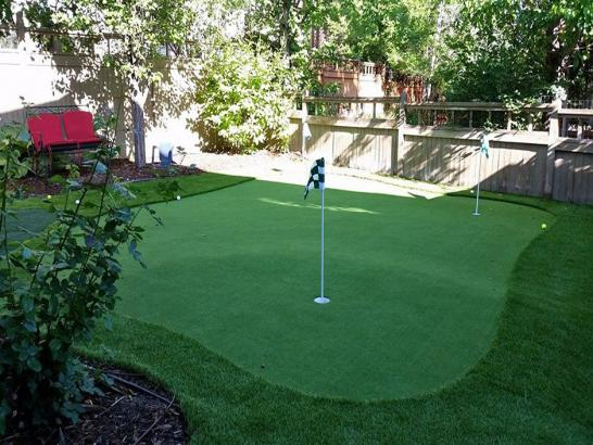 Artificial Grass Photos: Golf Putting Greens Nesconset New York Artificial Grass