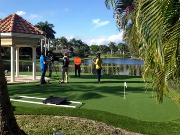 Golf Putting Greens North Valley Stream New York Faux Grass artificial grass