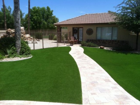 Artificial Grass Photos: Grass Turf Dover Plains, New York City Landscape, Front Yard Ideas