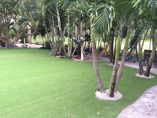 Artificial Grass Photos: Grass Turf Northville, New York Lawns, Commercial Landscape