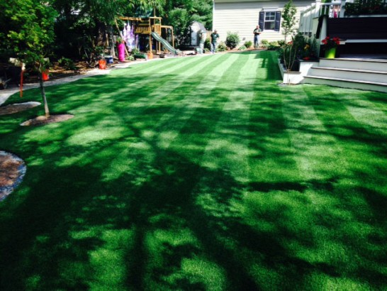 Artificial Grass Photos: Plastic Grass Hampton Bays, New York Landscape Design, Backyards