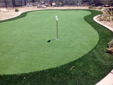 Putting Greens Baiting Hollow New York Synthetic Grass  Back artificial grass