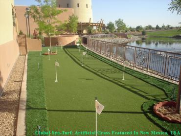 Putting Greens Jamaica New York Faux Grass artificial grass