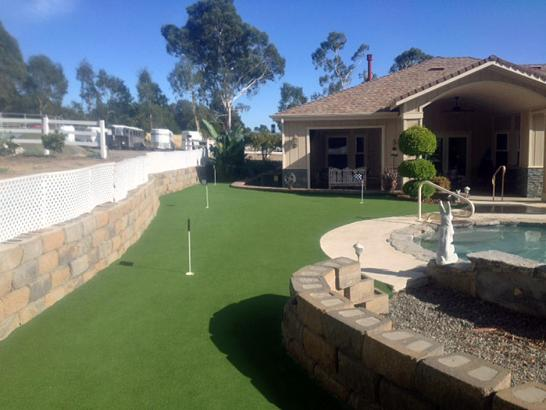 Artificial Grass Photos: Putting Greens Levittown New York Synthetic Grass