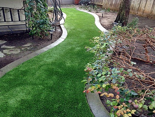 Artificial Grass Photos: Synthetic Grass Cold Spring New York Lawn  Back Yard