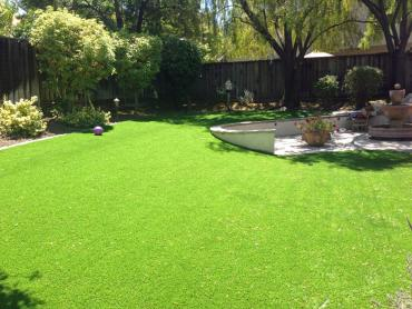 Synthetic Grass East Garden City New York Lawn  Front Yard artificial grass