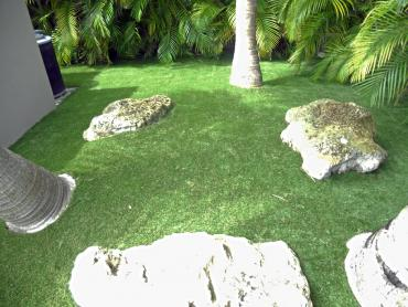 Artificial Grass Photos: Synthetic Grass Hewlett New York Lawn