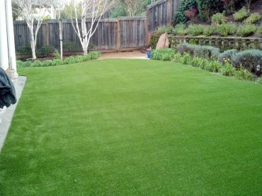 Artificial Grass Photos: Synthetic Grass Islip New York Lawn  Back Yard