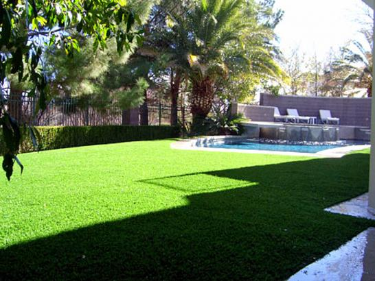 Artificial Grass Photos: Synthetic Grass Wantagh New York  Landscape  Front Yard