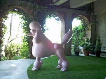 Artificial Grass Photos: Synthetic Pets Areas Plandome New York Installation