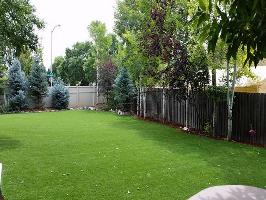 Artificial Grass Photos: Synthetic Pets Areas Saltaire New York Installation  Back