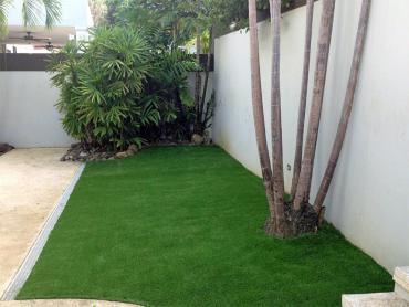 Artificial Grass Photos: Synthetic Turf Coney Island New York  Landscape  Front Yard