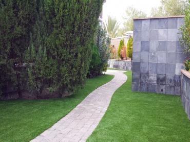 Artificial Grass Photos: Synthetic Turf Dix Hills New York  Landscape  Back Yard