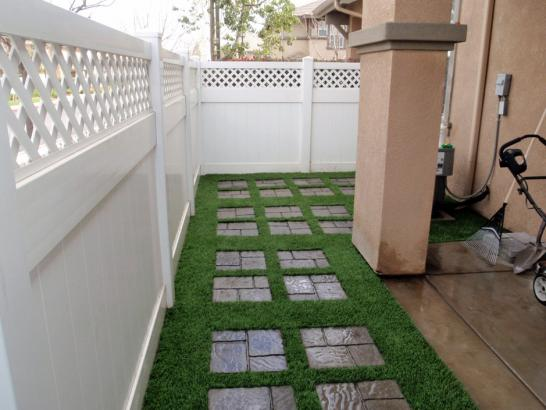 Artificial Grass Photos: Synthetic Turf Head of the Harbor New York Lawn  Back Yard