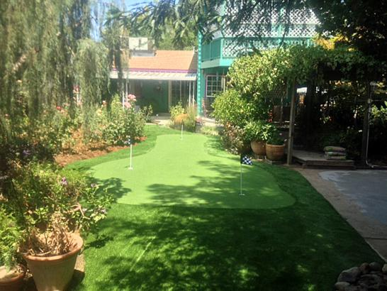 Synthetic Turf Scarsdale New York  Landscape  Front Yard artificial grass