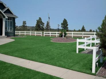 Artificial Grass Photos: Synthetic Turf South Blooming Grove New York  Landscape  Back