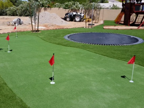 Artificial Grass Photos: Turf Grass Amenia, New York Putting Green Turf, Backyard Ideas