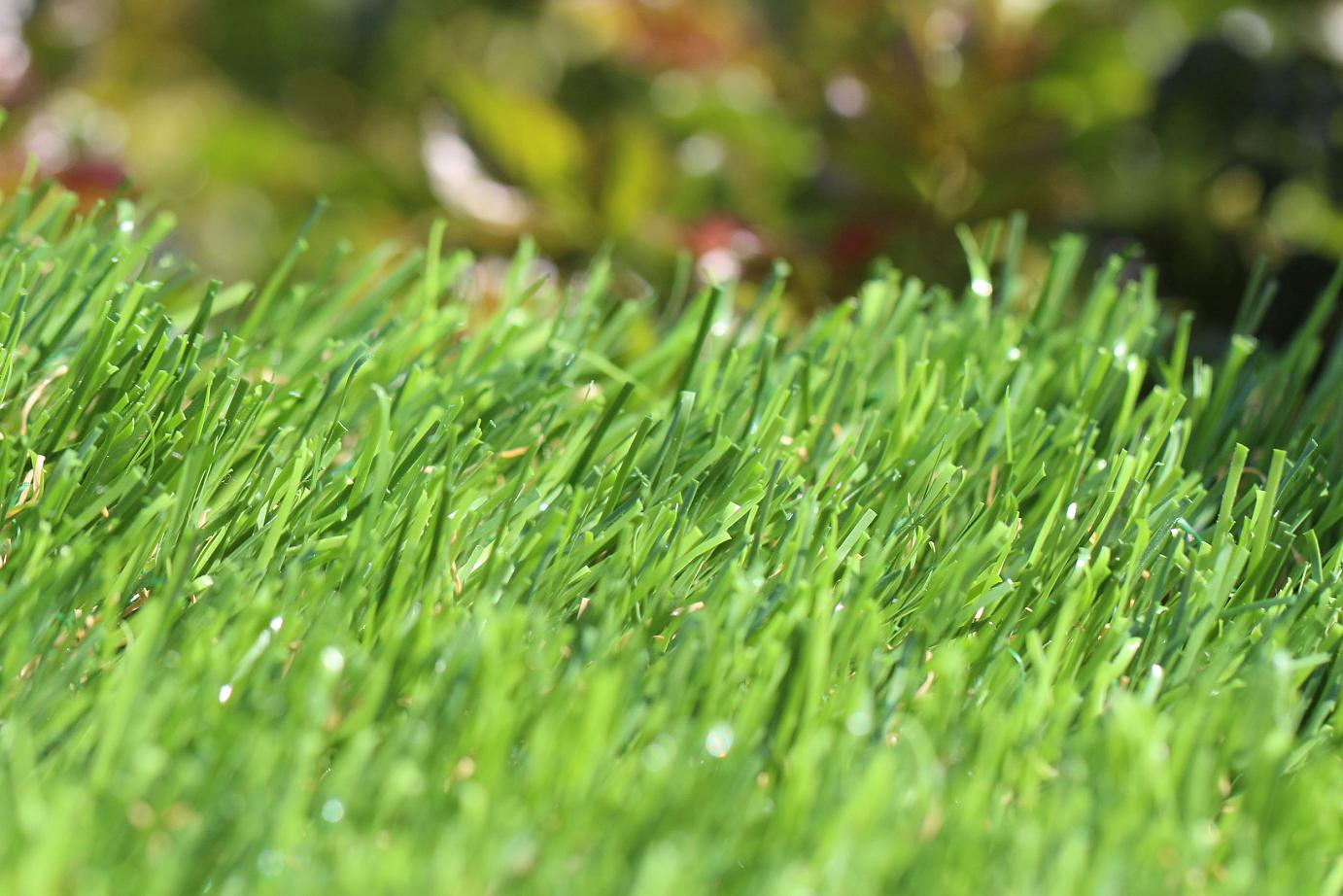 Artificial Grass Buy Artificial Turf