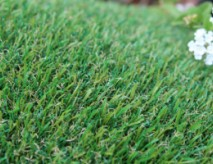 Petgrass-55 Synthetic Grass